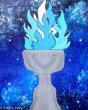 The image for KIDS CAMP - Goblet of Fire