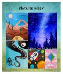 The image for Full Nature Week Sign Up