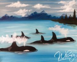 The image for Orca Pod